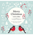 christmas with birds and text vector image vector image