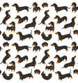 dachshund in action seamless pattern vector image