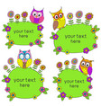 set isolated frames with funny owls vector image vector image