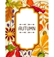 Frame with autumn leaves and plants Design for vector image