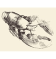 Lobster Crayfish Engraved Sketch vector image