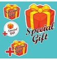 Special Gift Stickers vector image