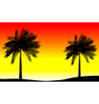 Tropic sunset vector image vector image