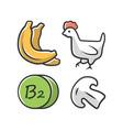 vitamin b2 color icon bananas poultry vector image vector image