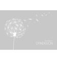 Abstract flower dandelion vector image