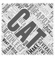 cat teapots Word Cloud Concept vector image vector image