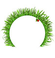 grass with white label vector image