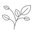 monochrome silhouette of branches with leaves vector image
