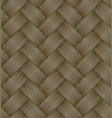 plaited background vector image