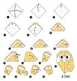 step instructions how to make origami a owl vector image vector image