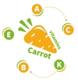 The logo or icon vitamins carrots vector image vector image