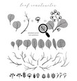big collection of branch and eucalyptus vector image vector image