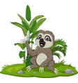 cute basloth sitting on grass vector image vector image