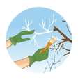Hands whitewashing a tree vector image vector image