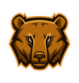 mascot stylized bear head vector image vector image