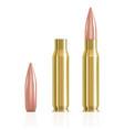 realistic ammunition cartridge ammunition bullets vector image