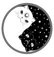 yin yang cats vector image vector image