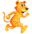 A young tiger running vector image vector image