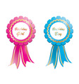 birthday rosettes vector image vector image