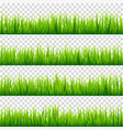 grass isolated on transparent background set vector image vector image
