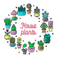 house plants and garden flowers poster vector image vector image