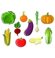 Isolated ripe healthy farm vegetables vector image vector image
