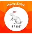 rabbit animals low poly logo icon symbol vector image vector image