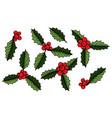set of christmas mistletoe vector image vector image