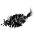 tattoo feather vector image vector image