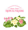 the flower paradise summer with vector image vector image