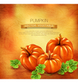 Vintage background with three pumpkins vector image vector image