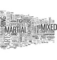 what is mixed martial arts text word cloud concept vector image vector image
