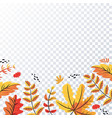 autumn leaves pattern on transparent background
