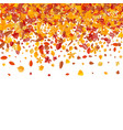 autumn pattern with bright tree leaves vector image vector image