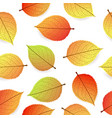 background with stylized autumn leaves vector image vector image