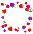 berries frame on white background with place for vector image vector image