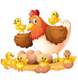 hen and chicks on nest vector image vector image