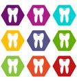 human tooth icon set color hexahedron vector image vector image