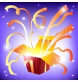 Open gift box with bright rays of light and flying vector image