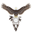 bald eagle with dreamcatcher vector image vector image