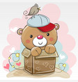 birthday card with a cute teddy vector image vector image