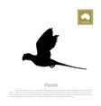black silhouette of a parrot on a white background vector image