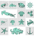 card on the marine-themed sea creatures vector image vector image