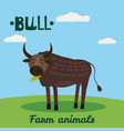 cute bull farm animal character farm animals vector image vector image