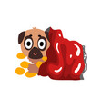 cute pug dog sitting in a package with chips vector image vector image