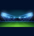 realistic football arena soccer playing field vector image