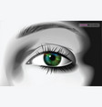 realistic woman eye vector image