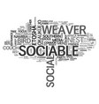 sociable word cloud concept vector image vector image