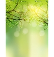 Background with selective focus EPS 10 vector image vector image