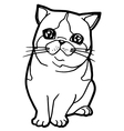 Coloring Book with cat vector image vector image